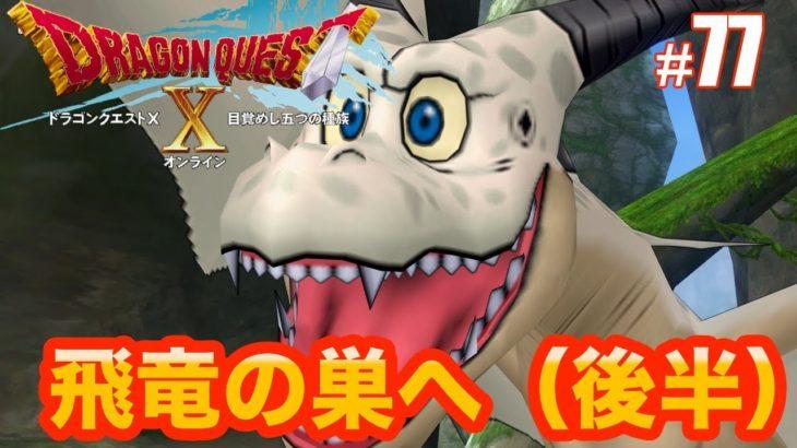 【ドラゴンクエスト10】飛竜の巣へ(後半) #77
